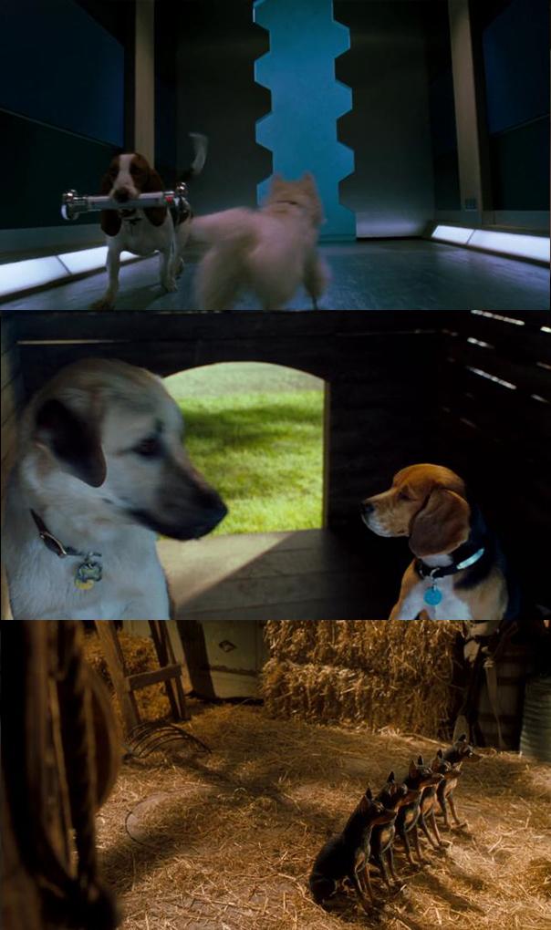 Como perros y gatos (2001) HD 1080p Latino 5.1 Dual