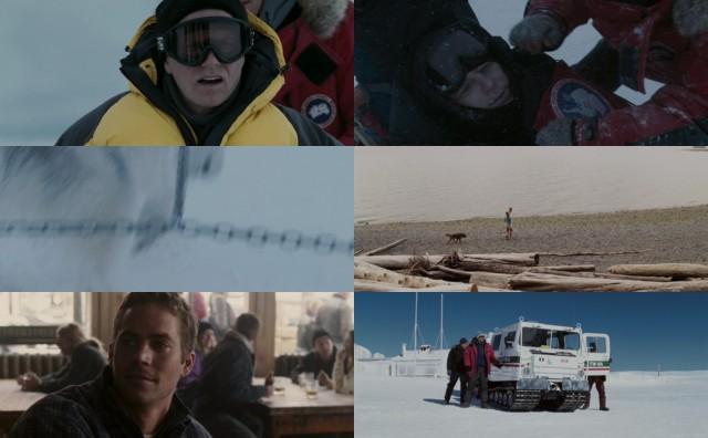 Rescate en la Antártida (2006) HD 1080p Latino Dual