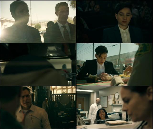 Deputy Temporada 1 (2020) HD 720p Latino Dual