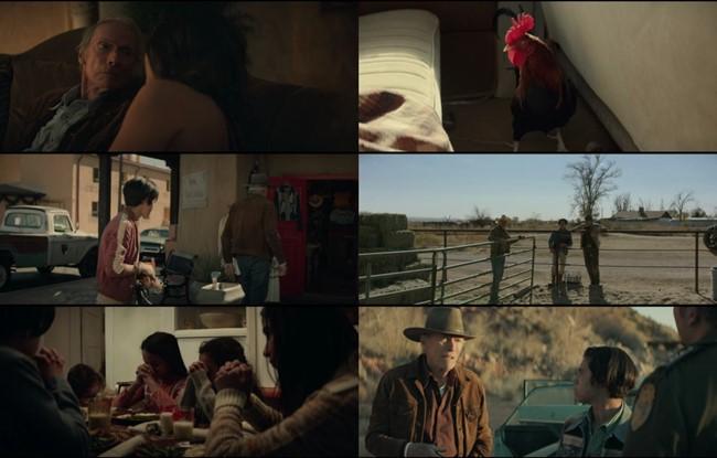 Cry Macho (2021) HD 1080p y 720p Latino Dual