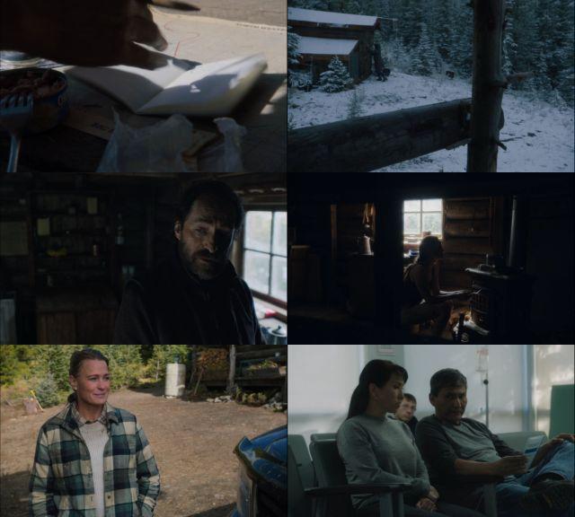 Land [En un lugar salvaje] (2021) HD 1080p y 720p Latino Dual