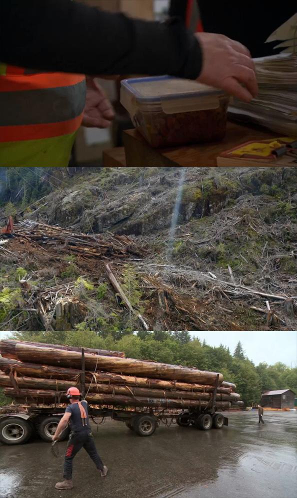Big Timber Temporada 1 Completa (2020) HD 720p Latino Dual