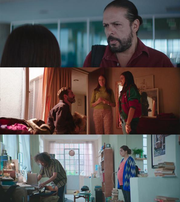 Souvenir (2019) HD 1080p Latino